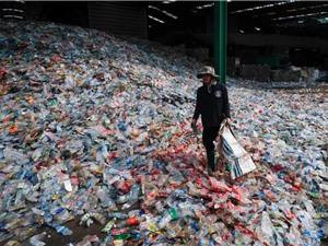 Chai nhựa gốc thực vật phân hủy chỉ trong một năm