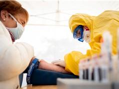 Xét nghiệm kháng thể diện rộng: Góp phần định hình chính sách chống Covid-19