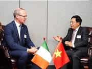 Ireland đánh giá cao vai trò chủ động của Việt Nam trong khu vực và quốc tế