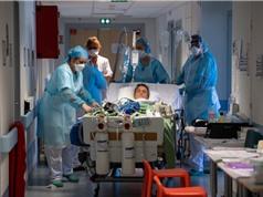 40 triệu chuyên gia y tế gửi khuyến nghị ưu tiên đầu tư vào y tế công cộng đến các lãnh đạo G20