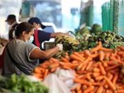 Ngăn chặn khủng hoảng thực phẩm do Covid-19
