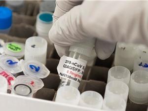 Các hãng dược phẩm chạy đua tìm kiếm vắcxin phòng ngừa COVID-19