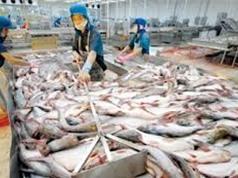 Tăng cường phân phối, tiêu thụ nội địa mặt hàng thủy sản