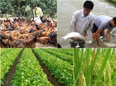 Ứng dụng KH&CN hiện đại để chọn tạo, phát triển và sản xuất giống cây trồng vật nuôi