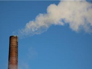 Nhu cầu về năng lượng tái tạo hầu như không tăng