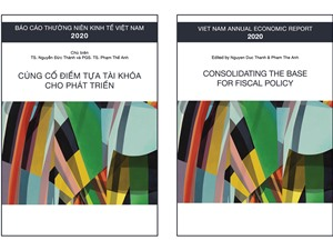Báo cáo thường niên Kinh tế Việt Nam 2020: Hệ thống thuế chưa hiệu quả và công bằng