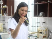 """TS Trần Thị Hồng Hạnh và phương pháp đánh giá chất lượng dược liệu bằng sắc ký """"dấu vân tay"""""""
