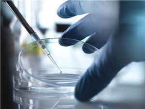 Điều trị ung thư vú ác tính bằng phương pháp làm câm gen