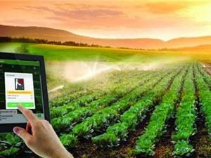 Nông nghiệp công nghệ cao hay nông nghiệp sinh thái?