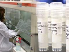 Nhật Bản thúc đẩy thử nghiệm lâm sàng vắcxin phòng COVID-19 trên người