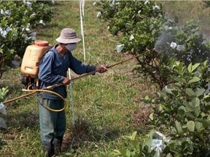 Hầu hết các quốc gia không giám sát việc sử dụng thuốc kháng sinh trên cây trồng