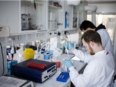 Covid-19 thúc đẩy số hóa và chia sẻ dữ liệu y tế