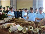 Gia tăng buôn lậu ngà voi trên các mạng xã hội tại Việt Nam, Indonesia và Thái Lan
