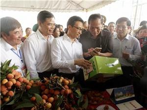 CheckVN: Quy trình xác thực chống hàng giả đầu tiên của Việt Nam