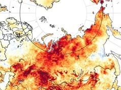 Siberia: Nắng nóng kéo dài 6 tháng do biến đổi khí hậu