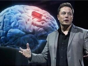 Tham vọng kết nối não người với máy tính
