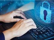 Bảo vệ dữ liệu và thông tin cá nhân cho Việt Nam: Đã đến lúc cần có đạo luật riêng