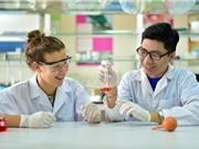 Cơ hội lấy bằng thạc sĩ khoa học quốc tế trong 1 năm tại ĐH Việt-Pháp