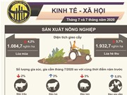 [Infographic] Dịch bệnh ảnh hưởng đến mọi mặt kinh tế - xã hội 7 tháng đầu năm