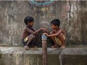 Nguy cơ nhiễm độc chì trong máu ở trẻ em các nước đang phát triển