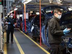 """""""Kinh tế ít chạm"""" hay sự thích nghi của doanh nghiệp với bối cảnh mới"""