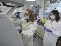 Đồng loạt thử nghiệm thuốc kháng thể chữa Covid-19