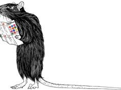Động vật suy nghĩ như thế nào? (Phần 2)