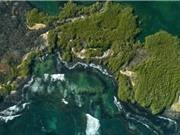 Phát hiện 30 loài động vật biển sâu mới ở quần đảo Galapagos