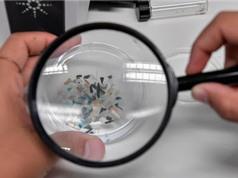 Lần đầu tiên phát hiện hạt vi nhựa trong nội tạng người