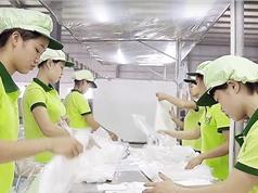 Phê duyệt Chương trình quốc gia hỗ trợ doanh nghiệp nâng cao năng suất và chất lượng sản phẩm