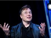 Elon Musk gắn chip máy tính vào não lợn