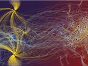 Cuộc cách mạng về dữ liệu hành vi trong khoa học xã hội