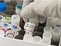 Các nước châu Âu tiếp nhận liều vắcxin đầu tiên vào cuối năm