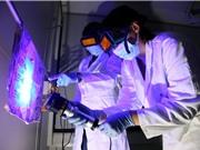 Dùng DNA và gia phả để điều tra vụ án: Phương pháp gây nhiều tranh cãi