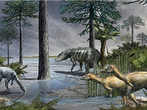 Sự kiện tuyệt chủng hàng loạt cách đây 233 triệu năm