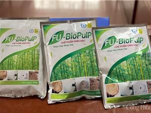 Chế phẩm sinh học phân hủy nhựa cây