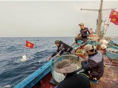 """Hệ thống chưng cất nước ngọt: Giải """"cơn khát"""" trên tàu đánh cá xa bờ"""