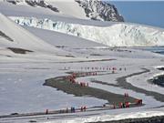 Bán đảo Nam Cực nóng kỷ lục trong nhiều thập kỷ
