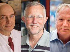 Nobel Y học cho ba nhà virus học phát hiện ra bệnh viêm gan C