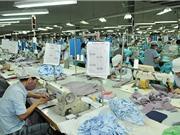 Lực lượng lao động tăng trở lại sau nhiều tháng giảm sâu