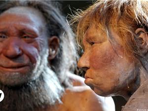 [Video] Mối liên hệ giữa Covid-19 và DNA của người Neanderthal