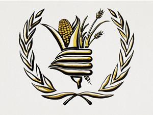 Chương trình Lương thực Thế giới, Nobel Hòa bình 2020: Cho đến ngày có vaccine Covid, thực phẩm là vaccine tốt nhất