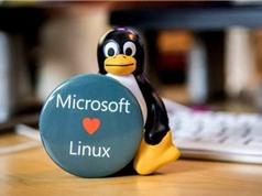Phải chăng Microsoft đang dần loại bỏ Windows để chuyển sang Linux?