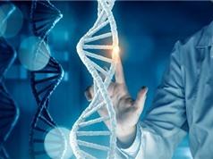 Dự án 1000 bộ gene: Khai thác nguồn dữ liệu gene của người Việt