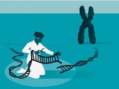 Hành trình nghiên cứu 'Chiếc kéo di truyền'