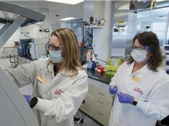 Thêm hai thử nghiệm thuốc và vaccine Covid-19 bị tạm dừng