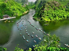Google: Xu hướng tìm kiếm địa điểm du lịch biển của người Việt tăng mạnh