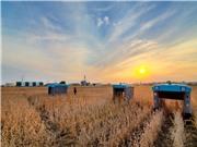 """Công ty mẹ của Google công bố dự án sản xuất lương thực bền vững """"Mineral"""""""
