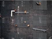 AI giám sát công trường xây dựng