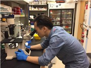 Sản xuất vaccine cúm A/H5N1: Chủ động tạo giống gốc của Việt Nam